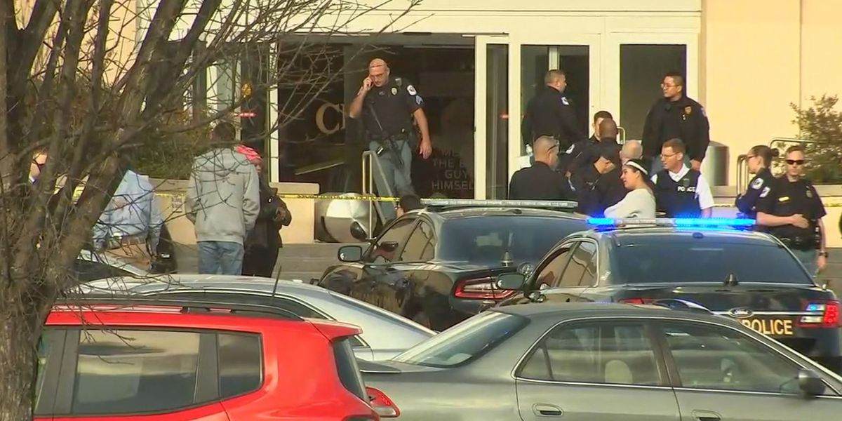 Two Georgia teenagers arrested in weekend mall shooting
