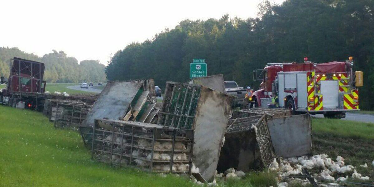 Chicken truck crash slows traffic on I-95 in Orangeburg Co.