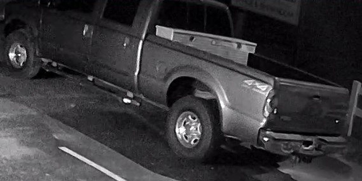 Sumter Police looking for two suspects in vehicle theft