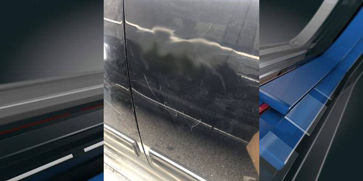 Police: Rep. Nancy Mace's car vandalized, keyed