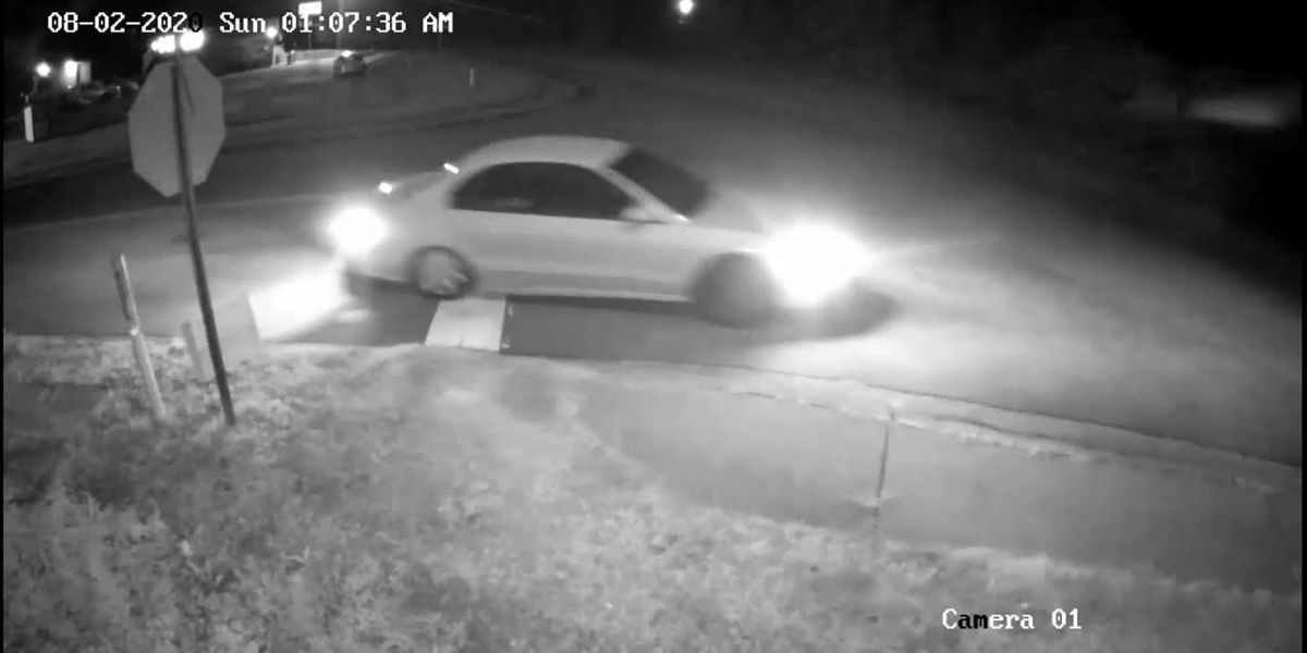 WATCH: Cayce police looking for witnesses of deadly weekend shooting