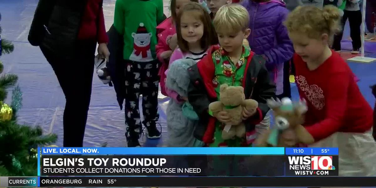 Elgin students join PD for Toy Roundup helping dozens of families for the holiday