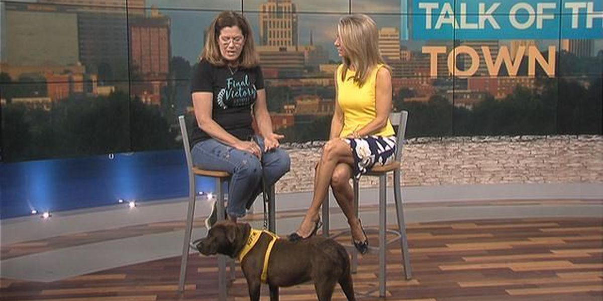 Talk of the Town: Final Victory Animal Rescue