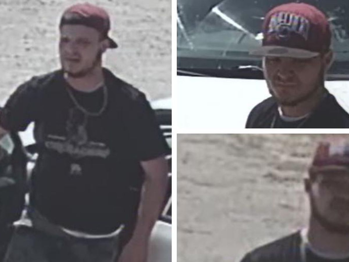Man wanted for stealing items from Lexington Co. home