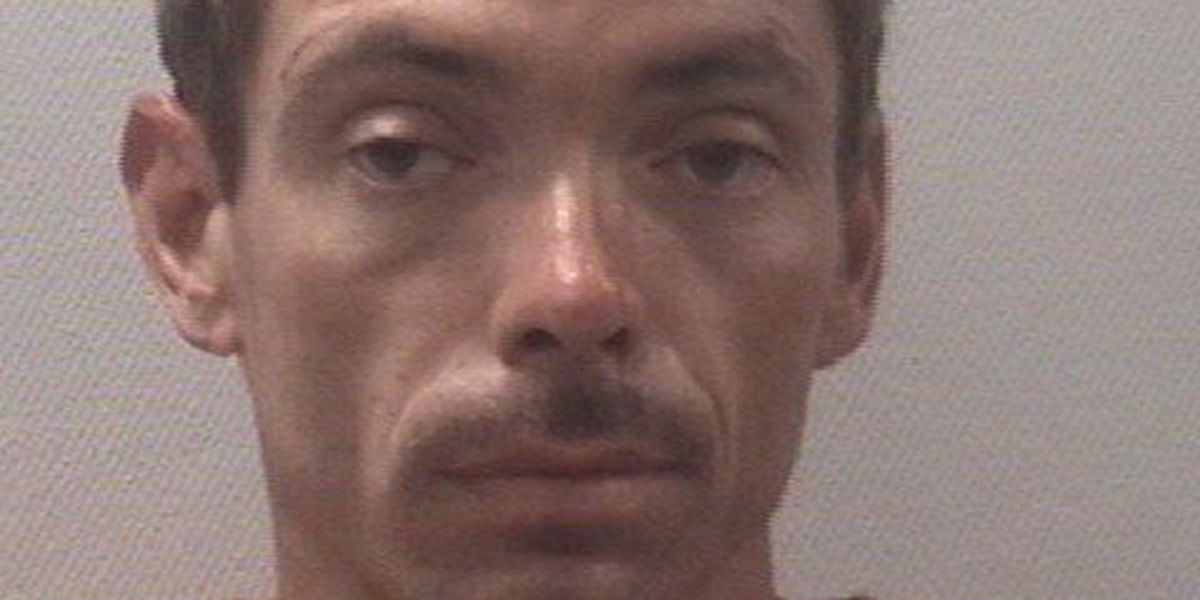 Charges filed for man accused of hitting LMC security officer with car