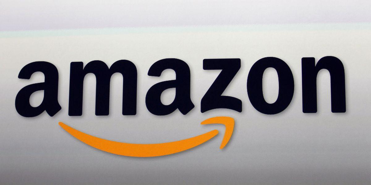 Amazon seeks to keep right-wing app Parler offline