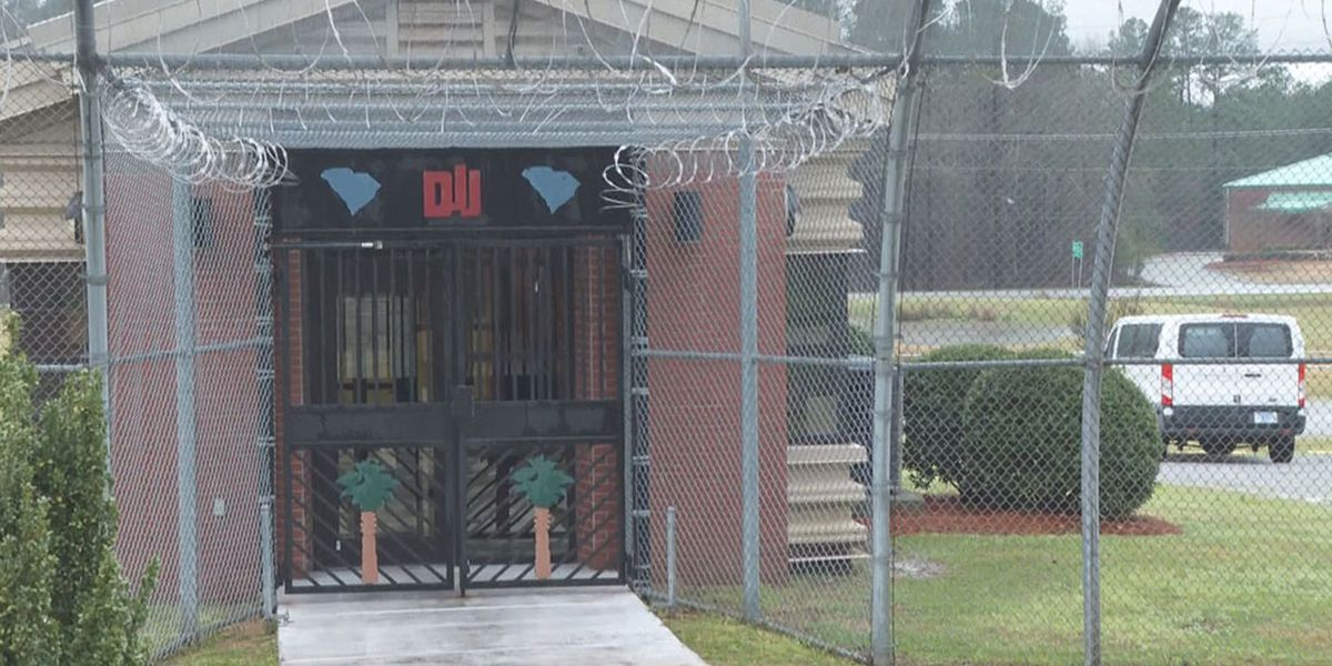 Lawsuits claim several girls were sexually assaulted, beaten inside DJJ facility in the Midlands