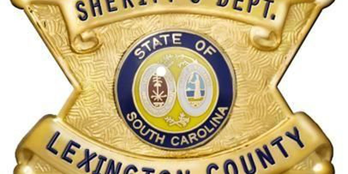 Reports: Nearly $150K raised for Lexington County sheriff's race