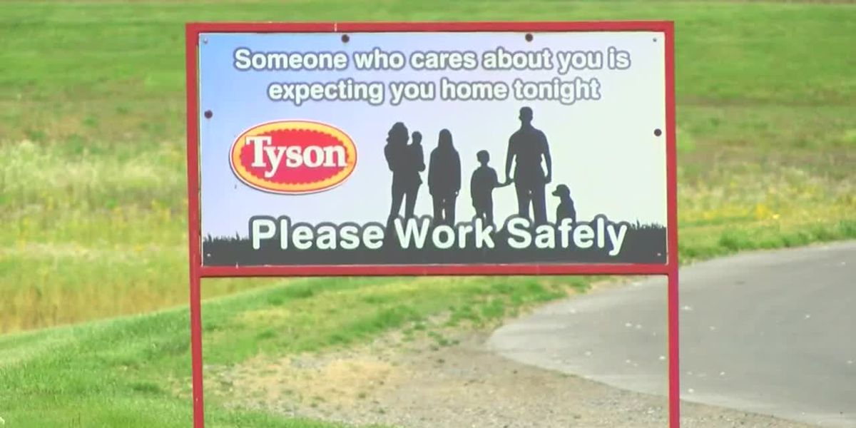 """Several"" employees test positive for COVID-19 at N.C. Tyson meat processing plant"