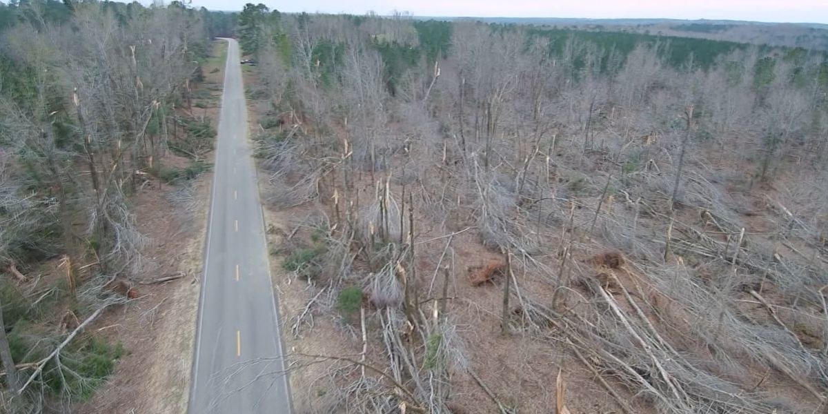 Drone footage shows EF-4 tornado's path of destruction in Lee Co., Alabama