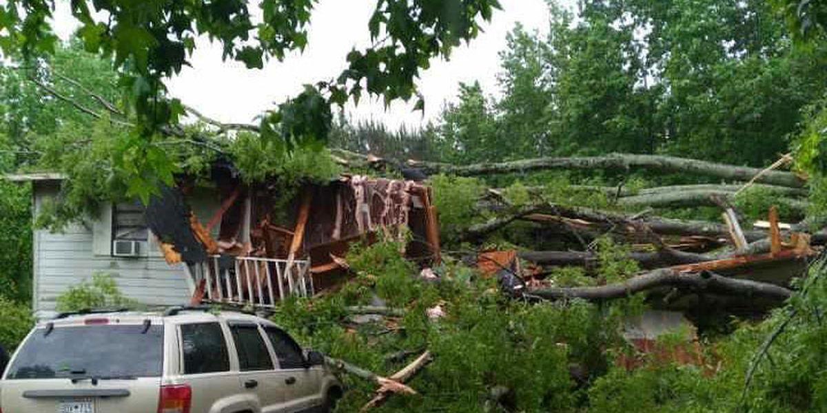 PHOTOS: Severe weather in Midlands causes property damage, power outages