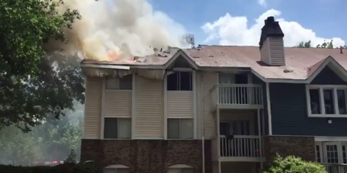 Child playing with lighter was cause of apartment fire that displaced 30, killed dog