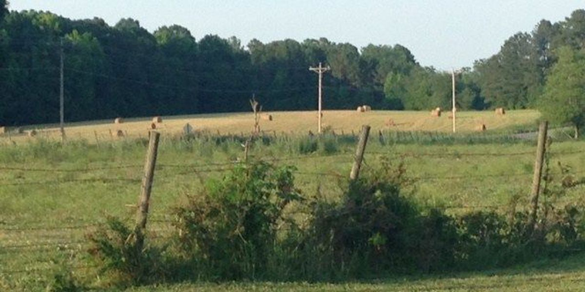 Lexington County homeowners call for zoning change as growth continues on peninsula