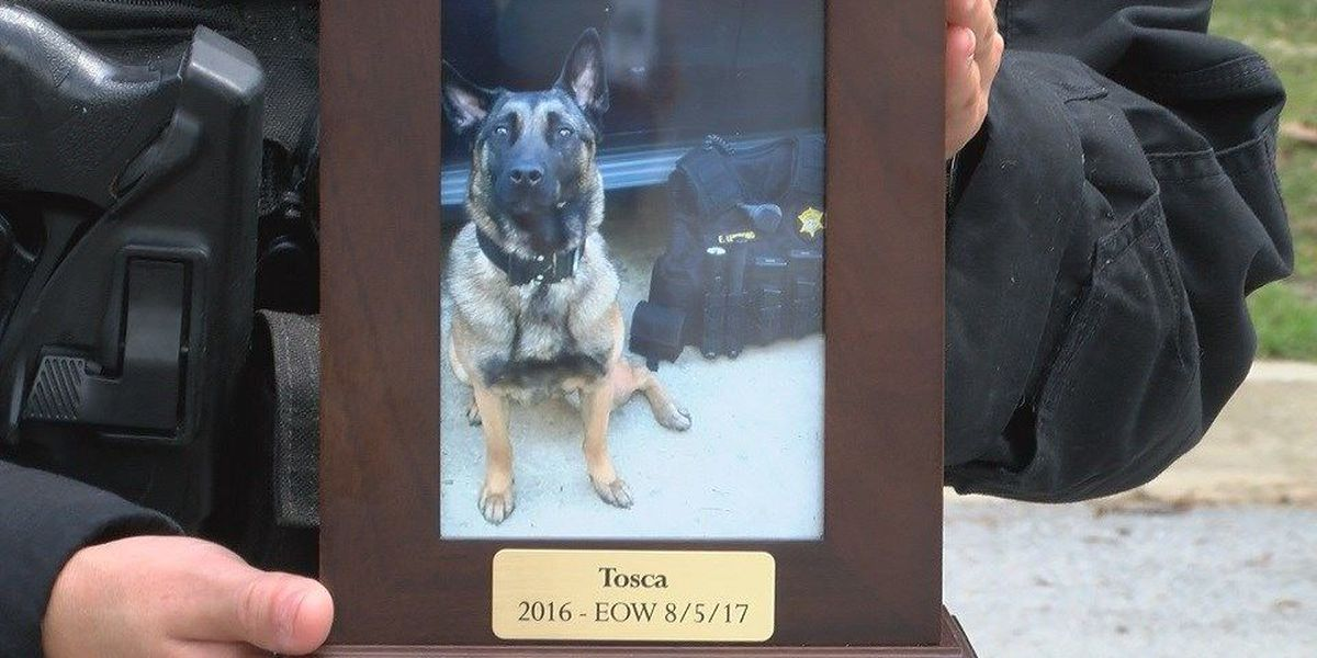 Fallen K-9 deputy honored by sheriff and the community