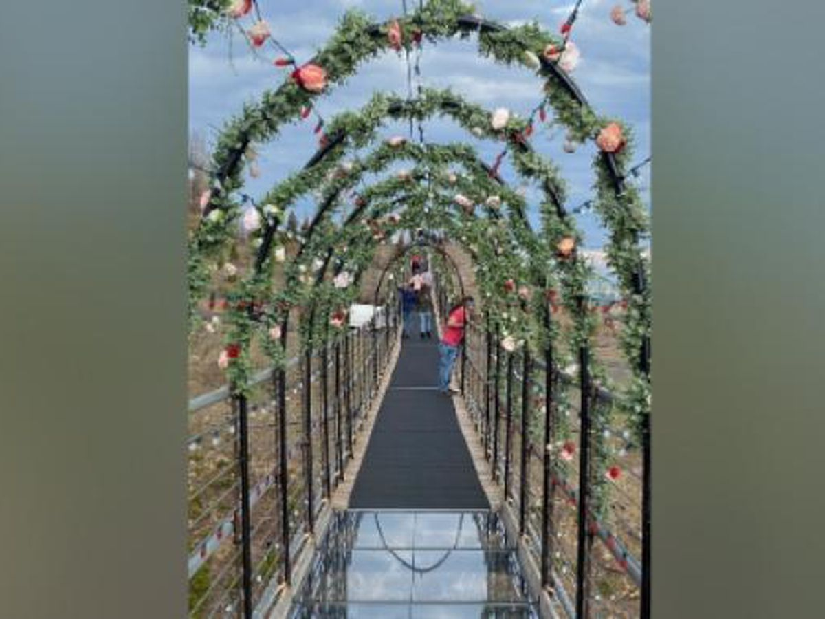 Gatlinburg SkyBridge announces 'Love is in the Air' event