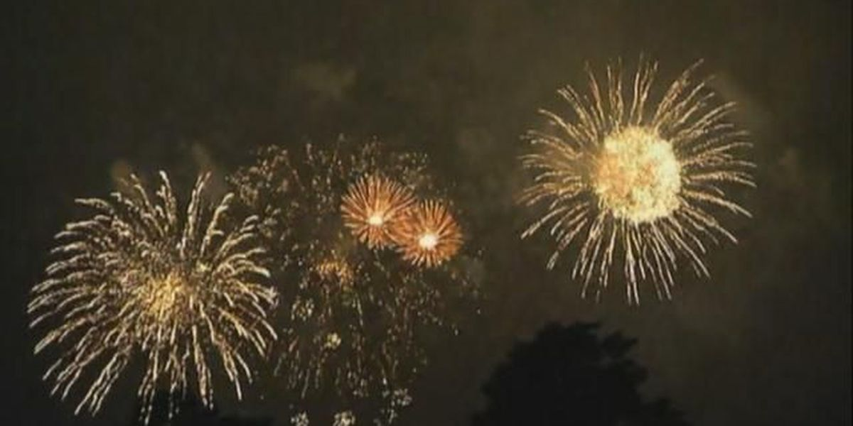Law Enforcement Officers' Fireworks Spectacular in Newberry postponed until Saturday