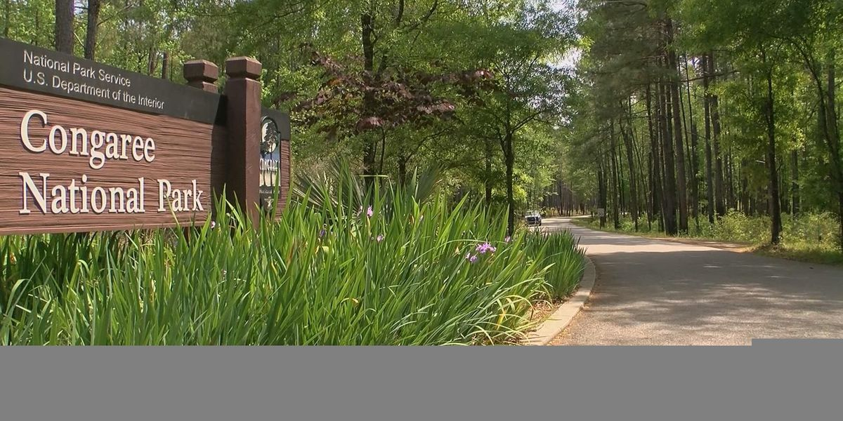 National Park Service seeks millions in repairs for parks in SC