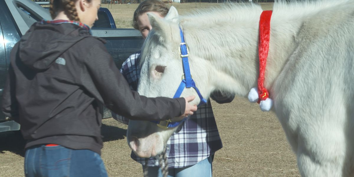 One-eyed horse helps young riders trot by their challenges