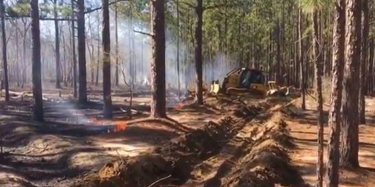Official: Crews contain intentionally-set fires in Lexington Co.