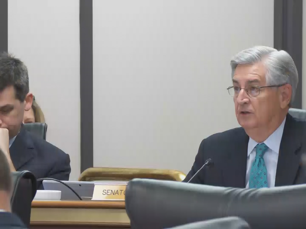 Senators set to continue work on education bill while deciding Santee Cooper's future
