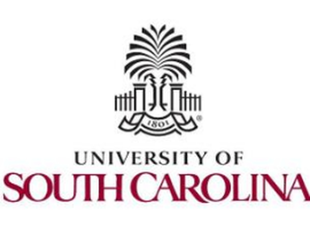 UofSC hires Diversity, Equity, and Inclusion Vice President