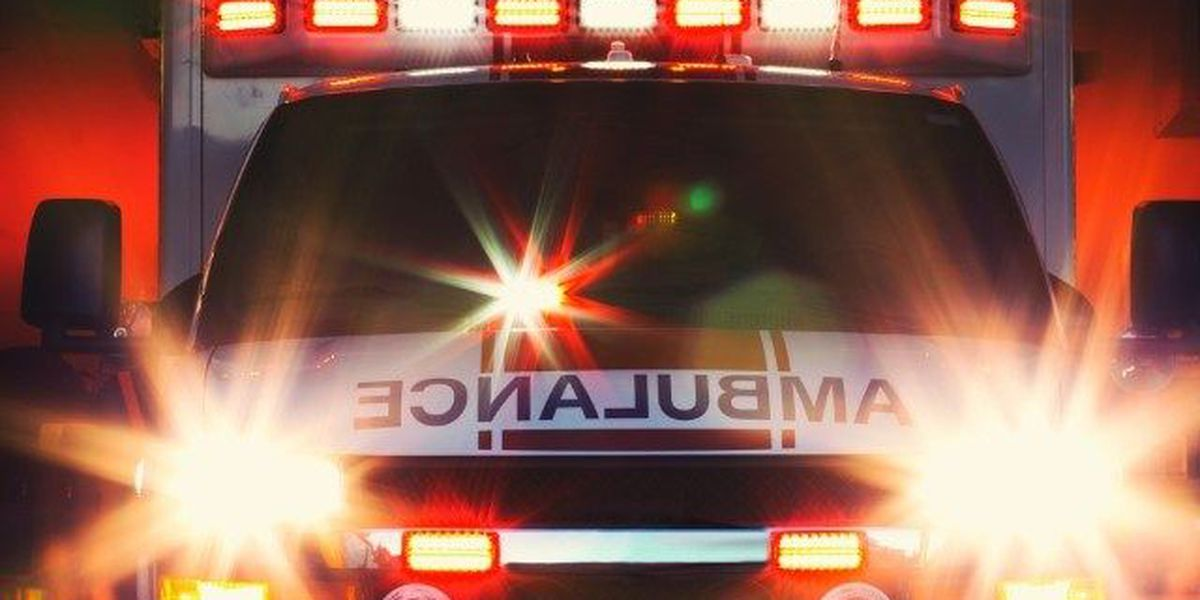 Vehicle crash and ejection killed 40-year-old near Pelion