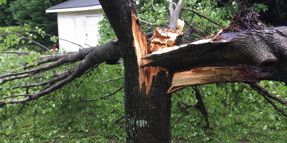 Severe storm damage in the Midlands