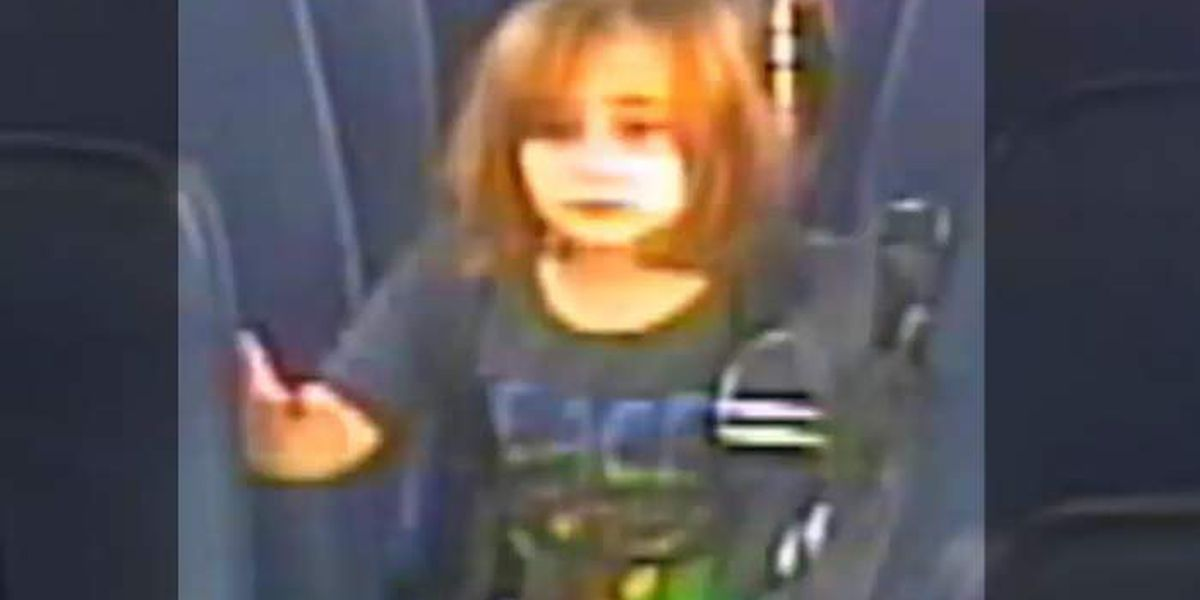 Search for missing 6-year-old Faye Swetlik still active, S.C. officials push back against rumors