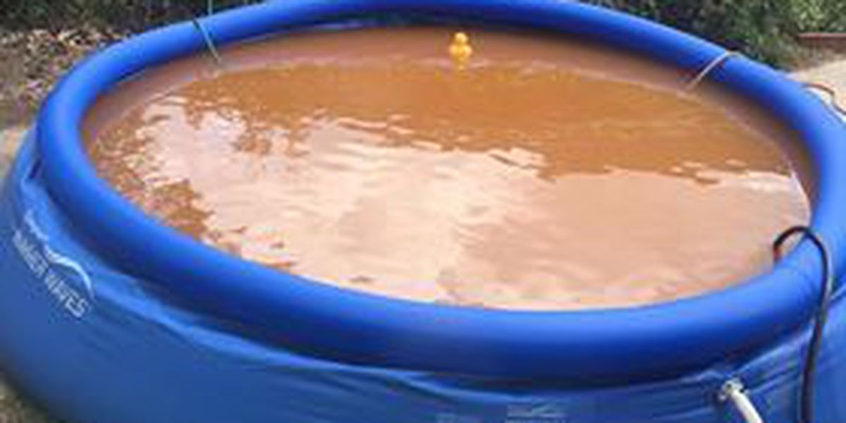 Want to go for a dip? Columbia man upset about muddy water coming from city line