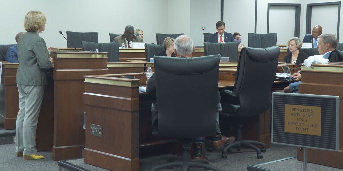 SC superintendent speaks to state Senate committee about need for summer program funding