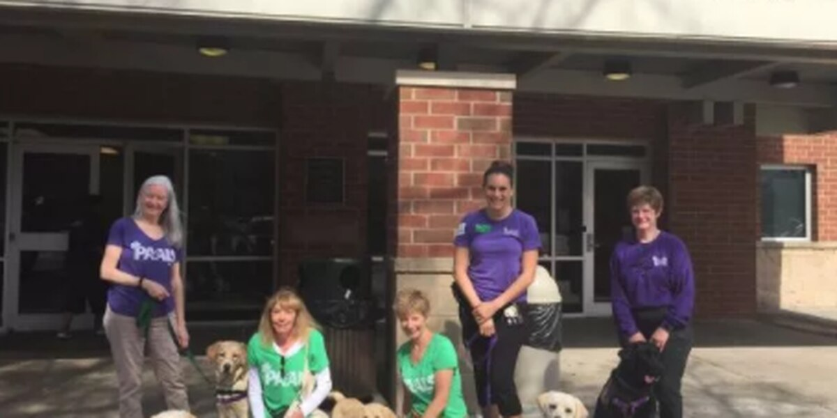 PAALS celebrates International Assistance Dog Week with activities