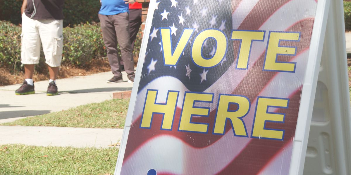 Richland Co. election vendor gives timeline on ballot data issue, says ballots remain 'ahead of schedule'