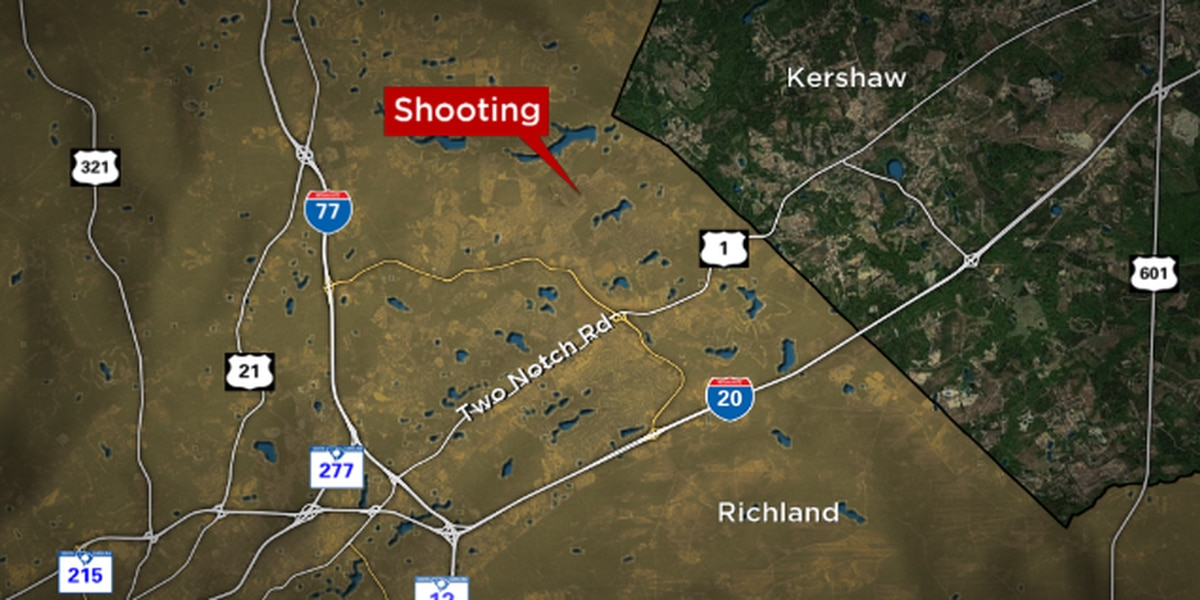 Man, woman die in murder-suicide in northeast Richland County