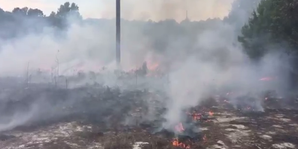 No injuries in 5-acre fire in Lexington Co.