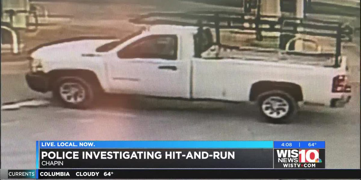 Chapin Police seek hit-and-run suspect