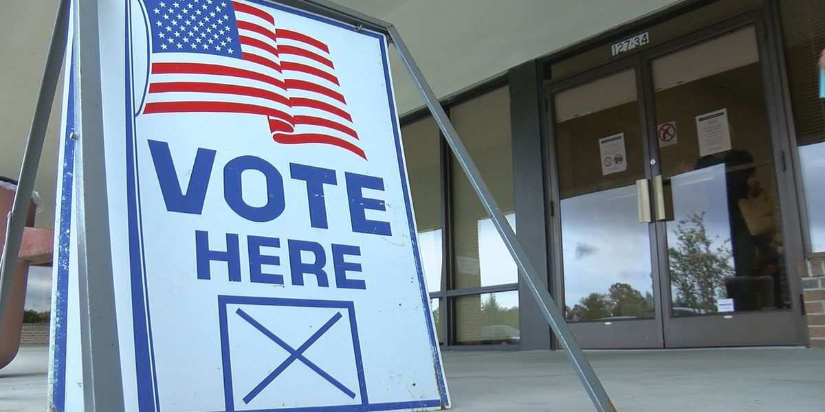 SC election officials are working to make sure your vote is safe