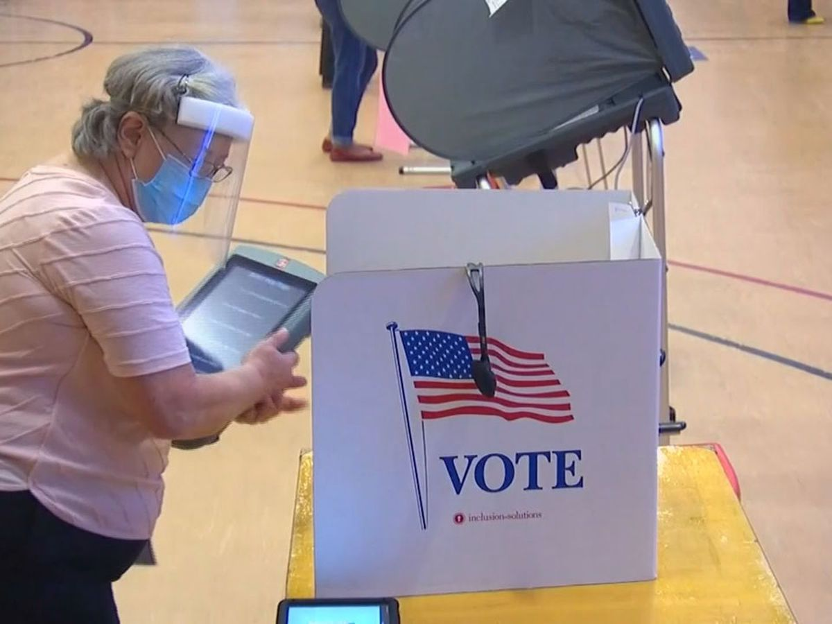 SC Democratic, Republican parties recruit record numbers of poll watchers for Election Day