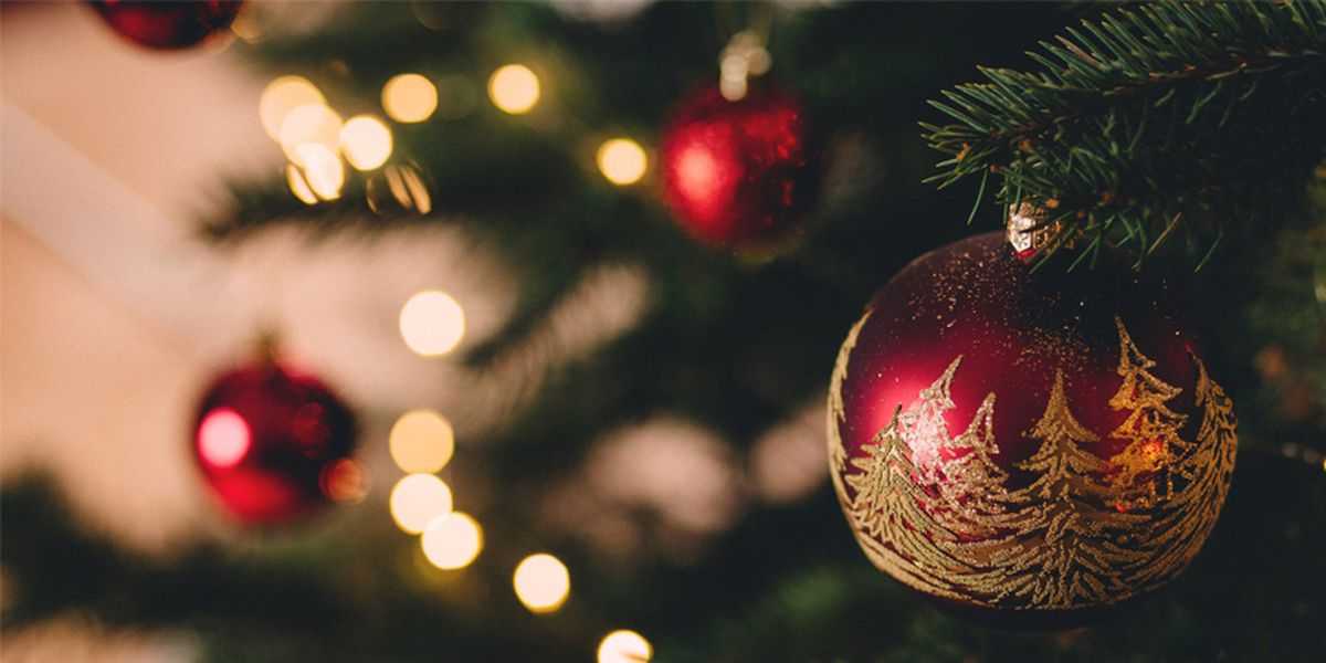 Christmas tree shortage could lead to higher prices this year