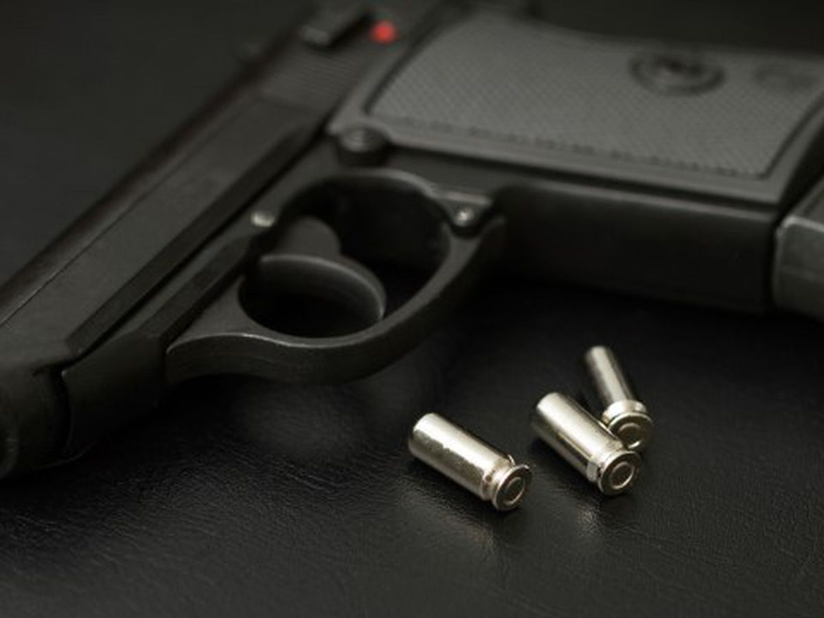 Report: Student, 13, took loaded gun to Howard Middle School