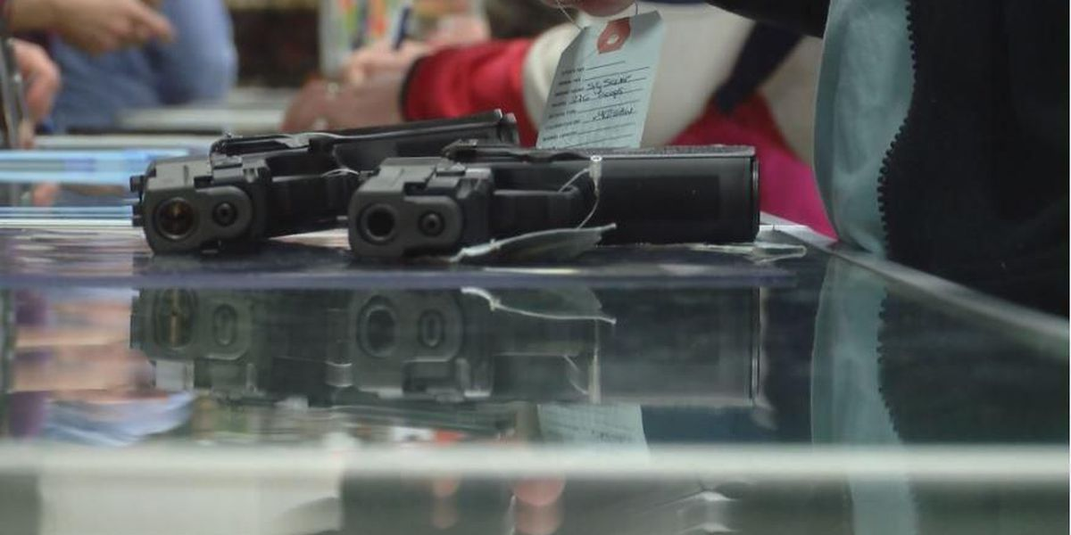 Fees on handguns proposed to make SC schools safer