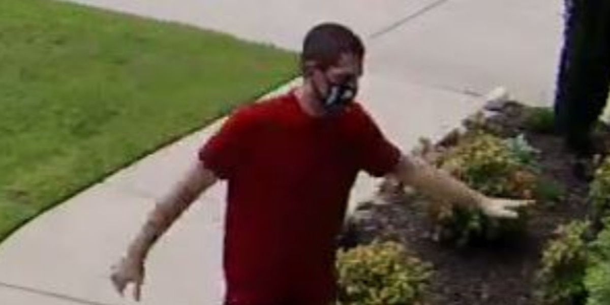 Lexington Police searching for larceny suspect