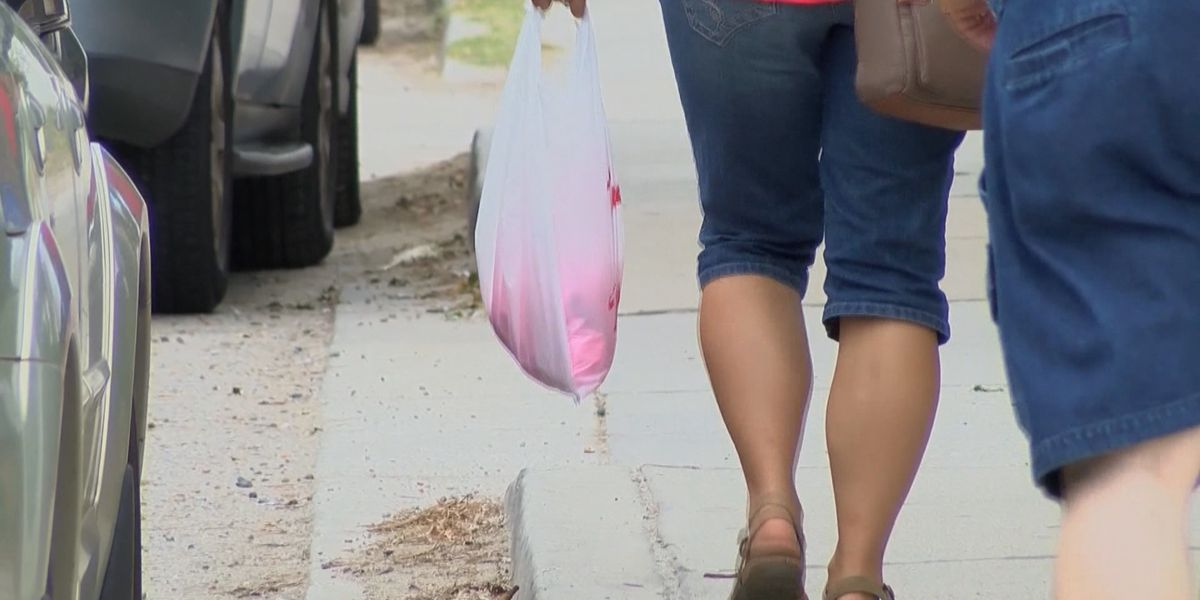 Municipalities and retailers chime on bill that want to ban plastic bag bans