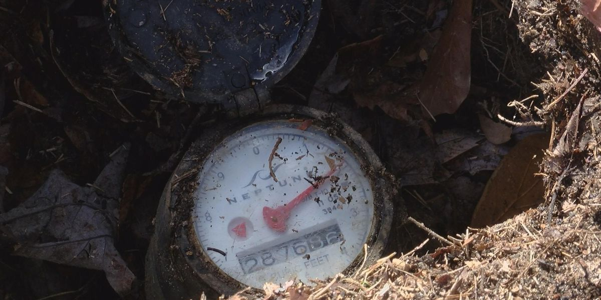 Approved city budget means meter replacement's a go