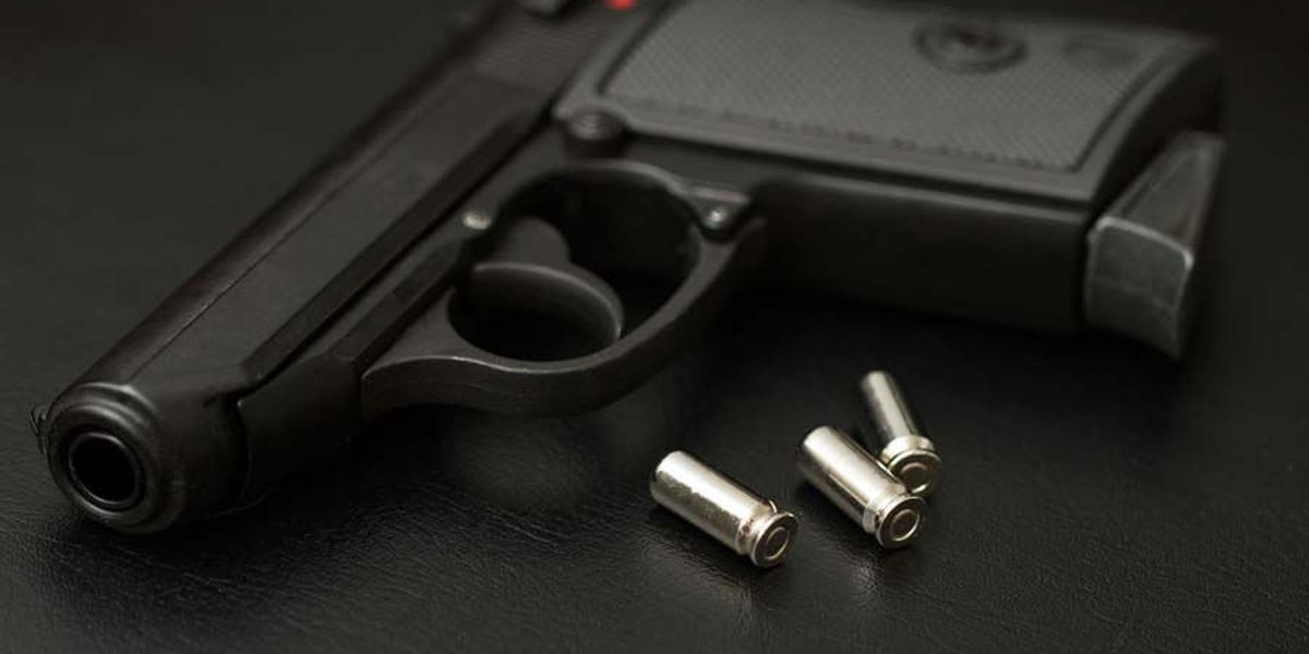 S.C. AG says Columbia's new gun ordinances violate Second Amendment, Mayor Benjamin disagrees