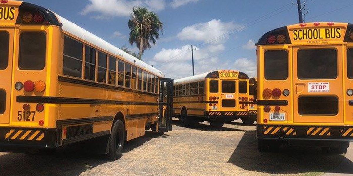 Buckle up kids: NTSB recommends safety belts on all new school buses