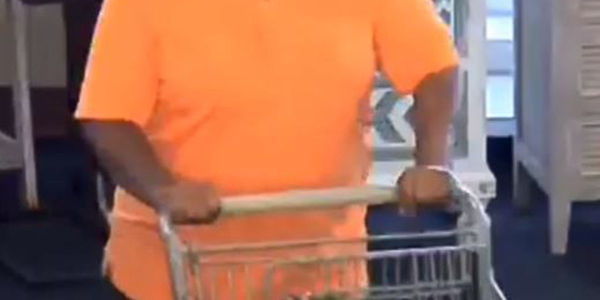 Shoplifter sought in Lexington for stealing $2500 worth of goods in purse