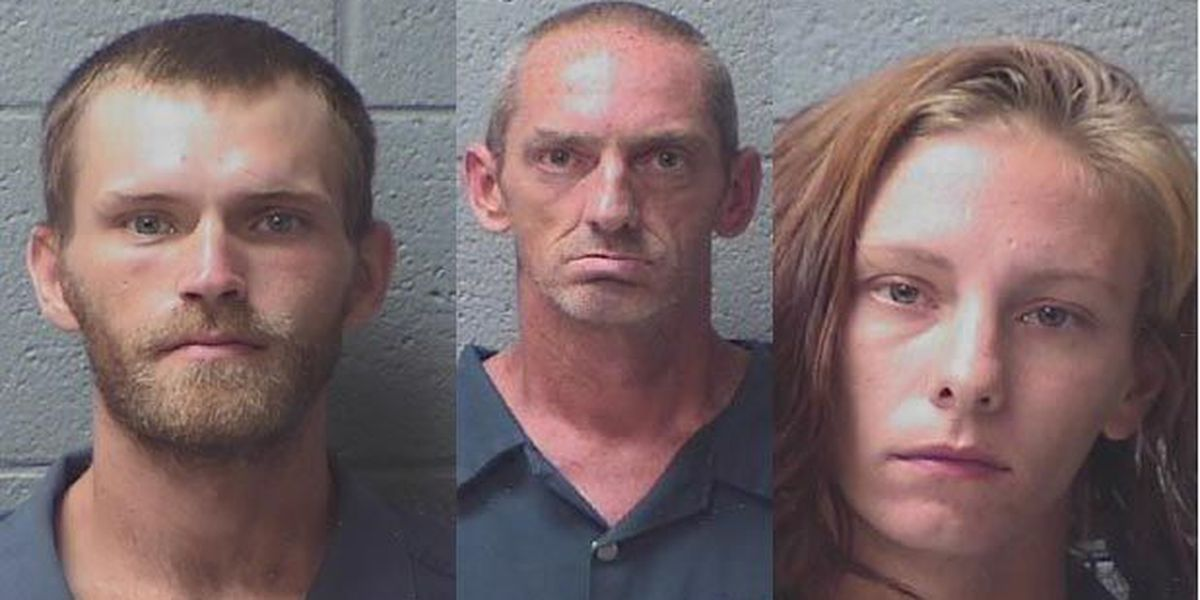 Sheriff: 238 warrants issued for trio in months-long, $35K burglary spree investigation