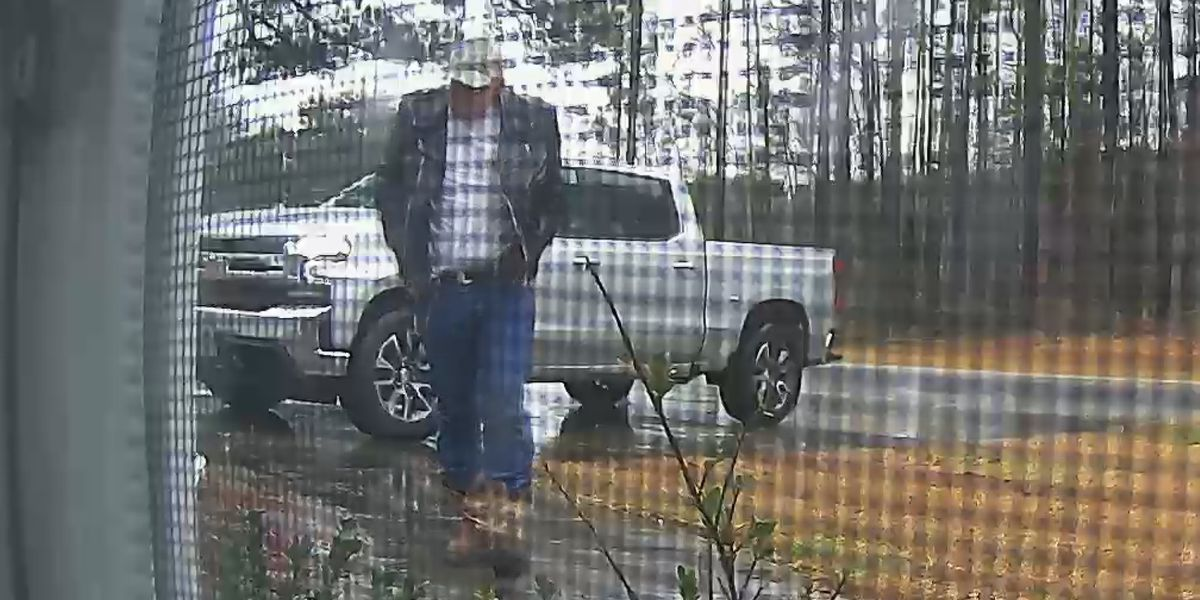 Police: Porch Pirate steals 4-year-old's package in N. Charleston