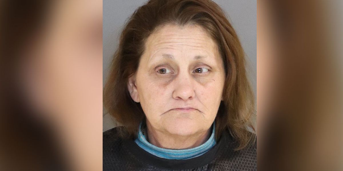 Woman arrested after stealing metal shed in Sumter Co.