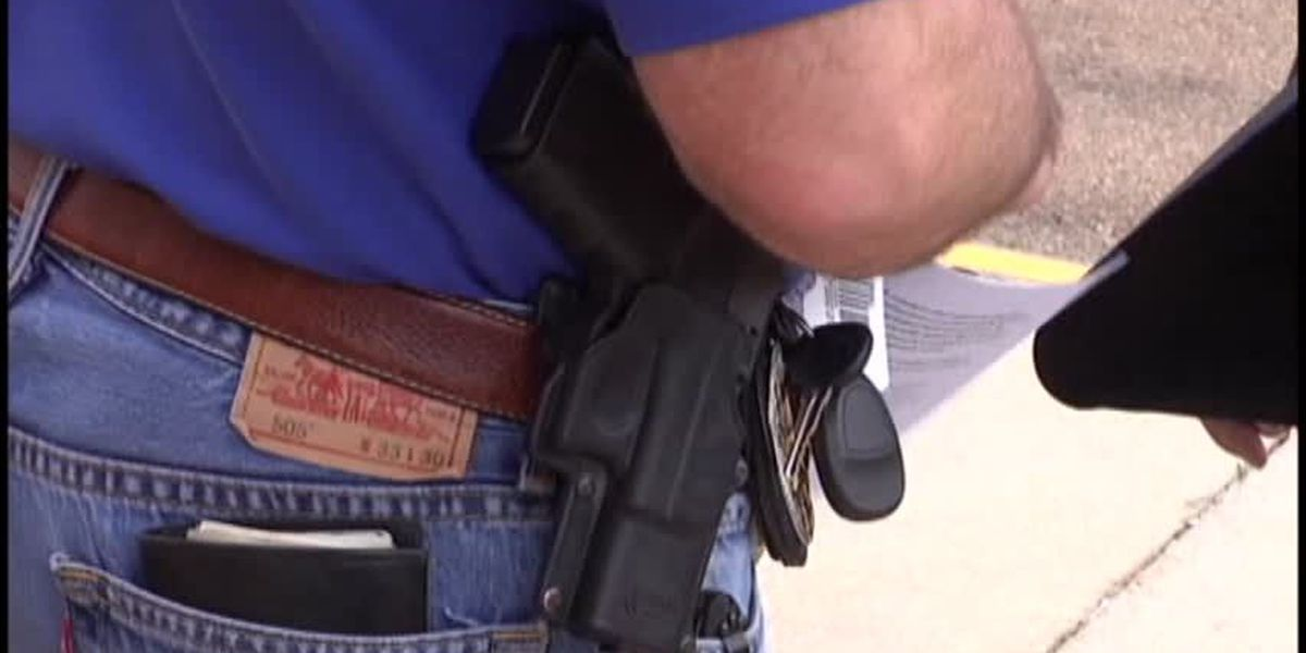 Open carry bill passes SC House; debate on broader gun rights bill expected in April